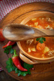 Veal stew Royalty Free Stock Photos