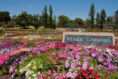 Veale Gärten Stockbilder