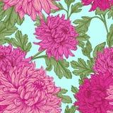 Veamless花卉样式 免版税库存图片