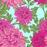 Veamless floral pattern. Royalty Free Stock Image