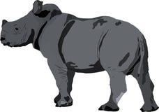 Veau blanc de rhinocéros Illustration Stock