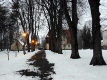 Vecchi alberi e percorso nella città di Silute, Lituania Fotografie Stock Libere da Diritti