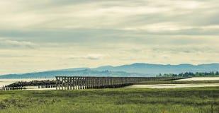 Vecchi allungamenti del cavalletto della ferrovia attraverso una secca scoperta a bassa marea Fotografia Stock