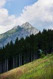 Vecchi ascensore e foresta di sci nella priorità alta e nel grande Rozsutec (Velk Immagini Stock