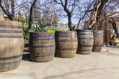 Vecchi barilotti della quercia che stanno sulla via Fotografia Stock