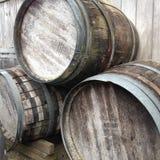 Vecchi barilotti di fabbricazione di vino fotografie stock libere da diritti
