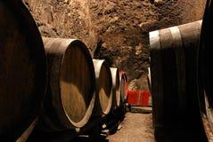 Vecchi barilotti di vino nella volta Fotografia Stock