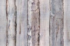 Vecchi bordi di legno grigi del recinto Struttura senza cuciture per modellare 3d Fotografie Stock Libere da Diritti