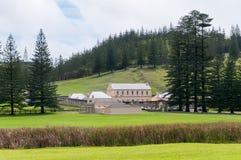 Vecchi caserme dei militari e pini della Norfolk, Kingston, isola Norfolk fotografie stock