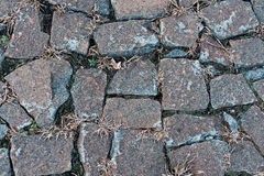 Vecchi ciottoli con erba Fotografia Stock Libera da Diritti