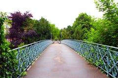 Vecchi città e ponte di Friburgo in Brisgovia in Germania immagini stock libere da diritti
