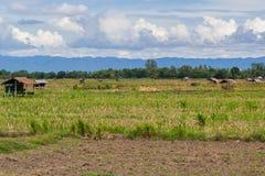 Vecchi cottage dell'agricoltore della Tailandia Fotografia Stock Libera da Diritti