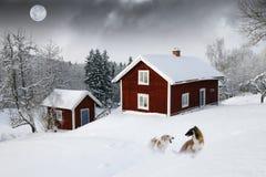 Vecchi cottage di legno rossi Fotografia Stock Libera da Diritti