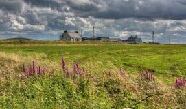 Vecchi cottage e siepi di arbusti, Irlanda Immagine Stock