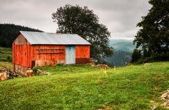 Vecchi cottage ed albero rossi in una zona rurale nebbiosa Immagine Stock
