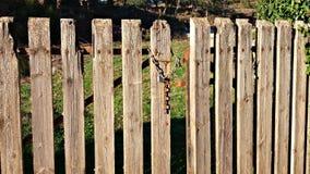 Vecchi dettagli di legno del recinto Immagini Stock Libere da Diritti
