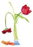 Vecchi fiori in un vaso immagini stock