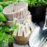 Vecchi flowerpots di terracotta Fotografia Stock Libera da Diritti