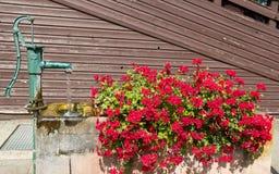 Vecchi fontain e fiori dell'acqua Fotografia Stock
