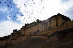 Vecchi fortificazione ed uccelli a Jaipur, India Immagini Stock