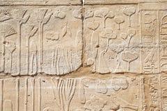 Vecchi geroglifici dell'egitto scolpiti Immagine Stock Libera da Diritti