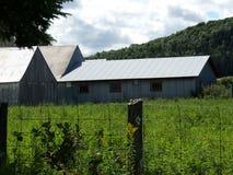 Vecchi granai di legno con i tetti del metallo Immagini Stock