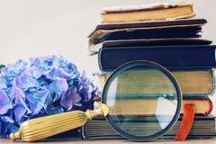 Vecchi libri con i fiori Fotografia Stock