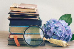 Vecchi libri con i fiori ed il vetro di sguardo Fotografia Stock