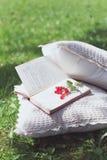 Vecchi libri con l'uva passa Immagini Stock Libere da Diritti