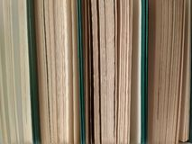 Vecchi libri verdi della copertura un giorno soleggiato immagine stock