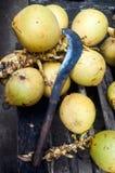 Vecchi machete e noci di cocco sulla tavola di legno Fotografia Stock Libera da Diritti