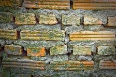 Vecchi mattoni con il fondo verde del muschio Immagini Stock Libere da Diritti