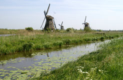 Vecchi mulini a vento tradizionali nei Paesi Bassi Fotografia Stock Libera da Diritti