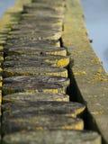 Vecchi pali di legno Immagini Stock