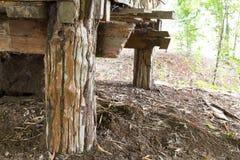 Vecchi pali di legno fotografie stock libere da diritti