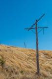 Vecchi pali di telegrafo Fotografia Stock
