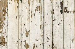 Vecchi pannelli di legno bianchi Fotografia Stock Libera da Diritti
