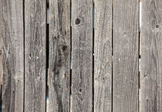 Vecchi pannelli di legno grigi del recinto Fotografia Stock Libera da Diritti