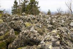 Vecchi pietre ed alberi con muschio su una montagna Fotografie Stock