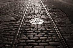 Vecchi piste e cobblestones del carrello Immagini Stock Libere da Diritti