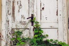 Vecchi portelli di legno Immagine Stock