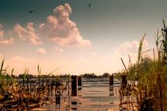 Vecchi punti di pesca Fotografia Stock Libera da Diritti
