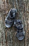 Vecchi sandali usati Immagine Stock