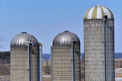 3 vecchi silos in Wisconsin del sud Fotografia Stock Libera da Diritti
