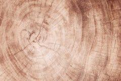 Vecchi struttura e fondo di legno, fondo astratto Immagine Stock Libera da Diritti