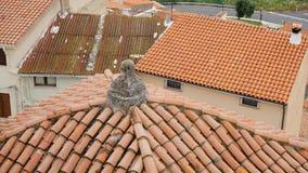 Vecchi tetti in Italia Immagine Stock Libera da Diritti