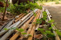 Vecchi tubi d'annata del PVC con il tubo flessibile dell'acqua - verde all'aperto Le del giardino immagine stock