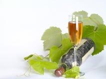 Vecchia ancora-vita del vino. Fotografia Stock