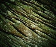 Vecchia arenaria corrugata Fotografie Stock Libere da Diritti