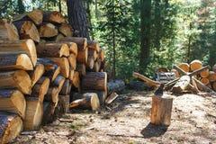 Vecchia ascia che sta contro i pezzi accatastati di legna da ardere Fotografie Stock Libere da Diritti